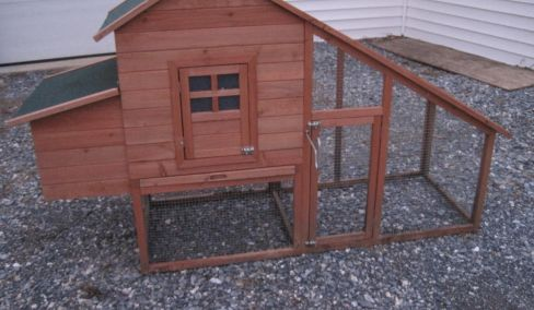 Chicken coop, Wicker Patio Set, Furniture